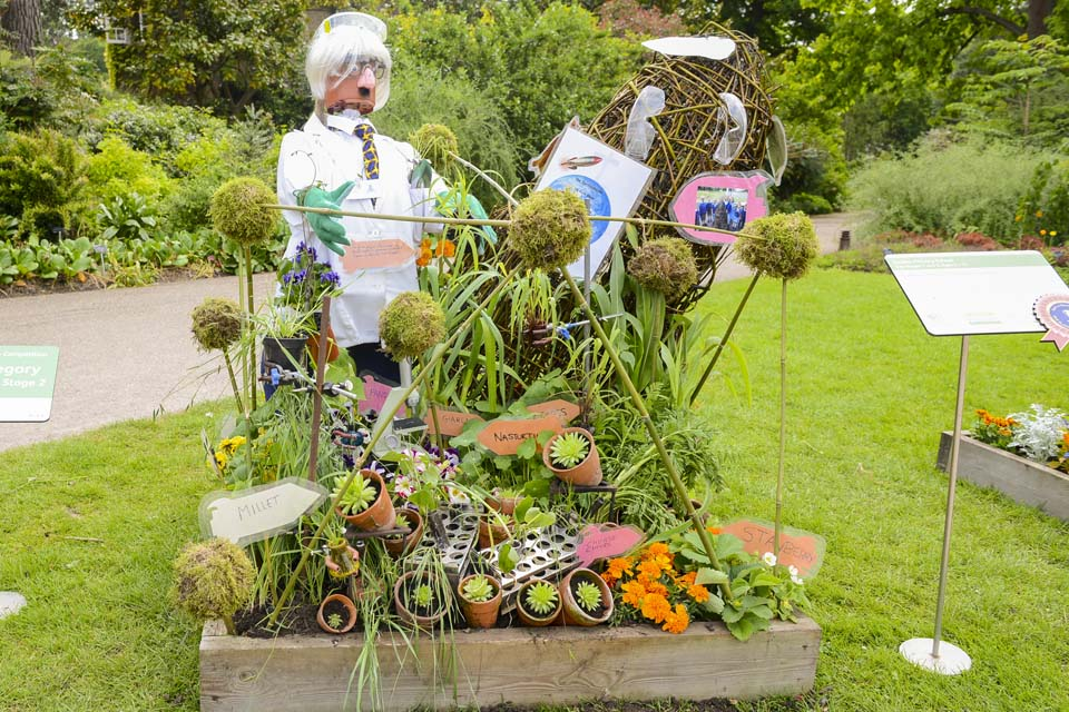 Marvelous RHS Campaign For School Gardening