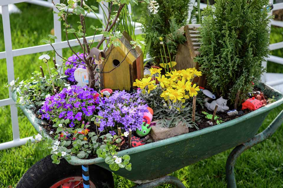 Cardiff wheelbarrow competition rhs campaign for school for Garden design ideas rhs