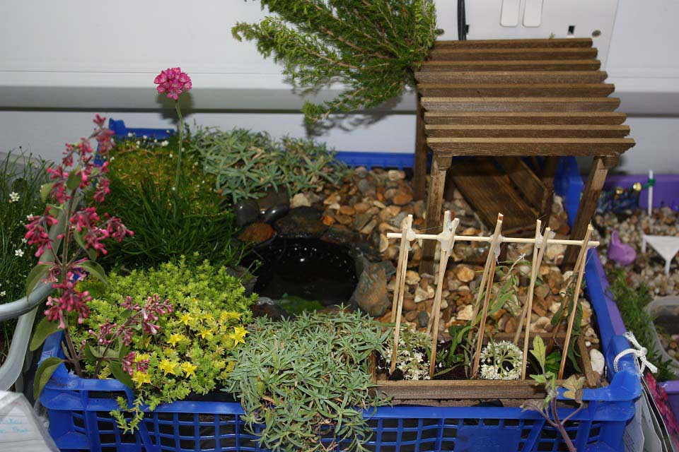 Design a miniature garden / RHS Campaign for School Gardening