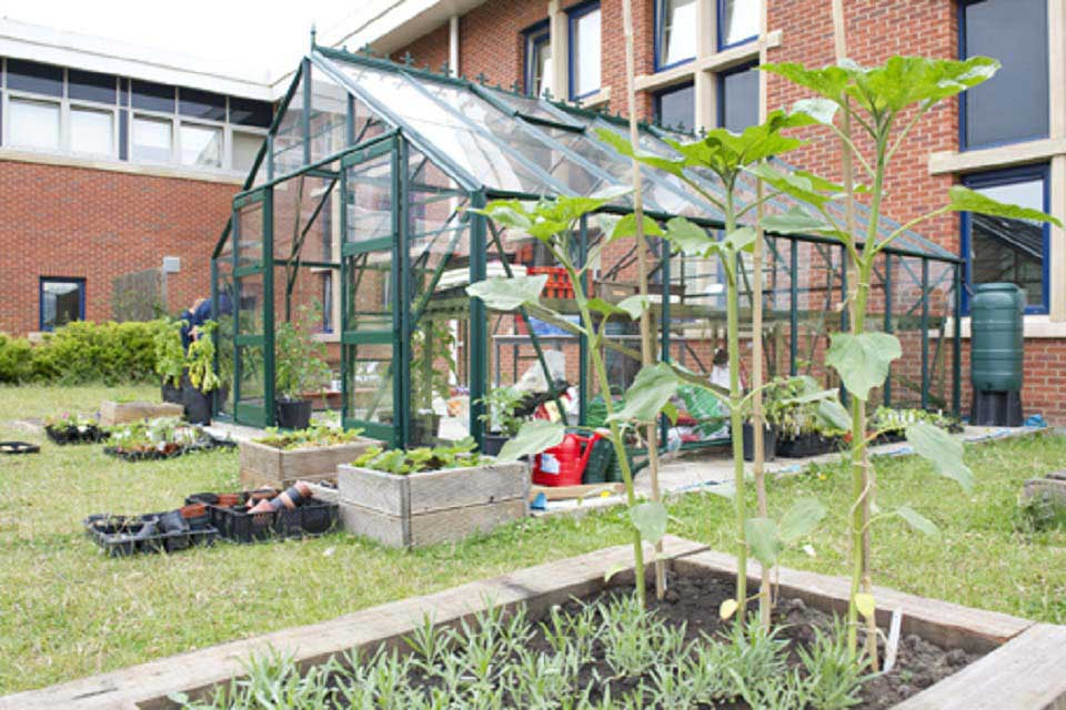 Image result for greenhouses school garden""