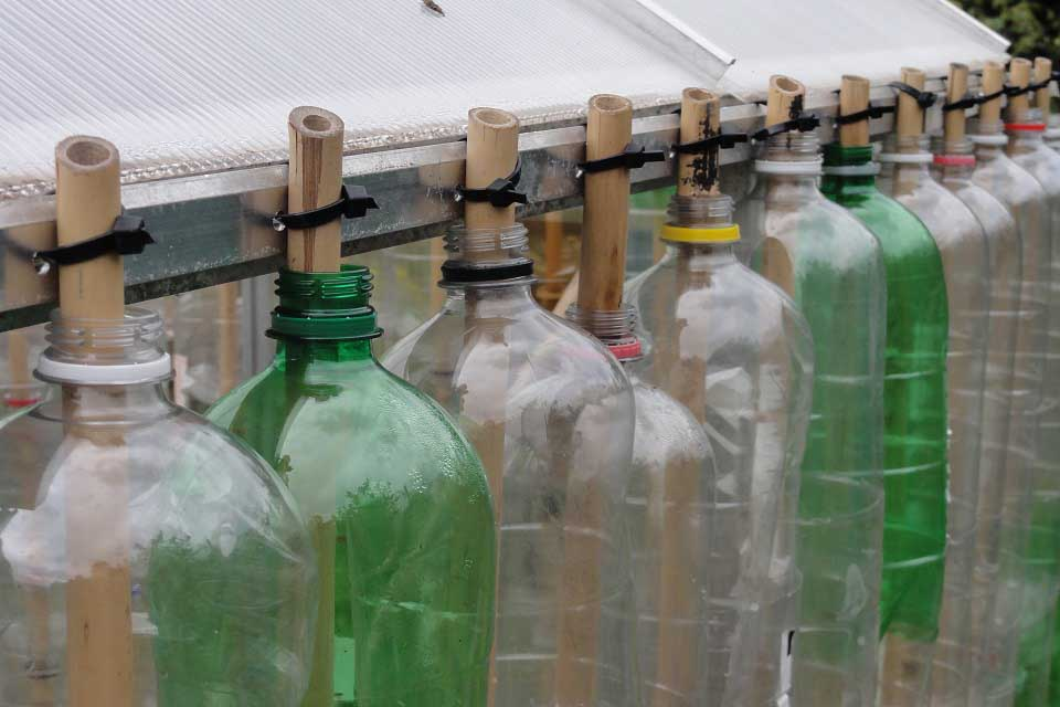 Building A Bottle Greenhouse Rhs Campaign For School